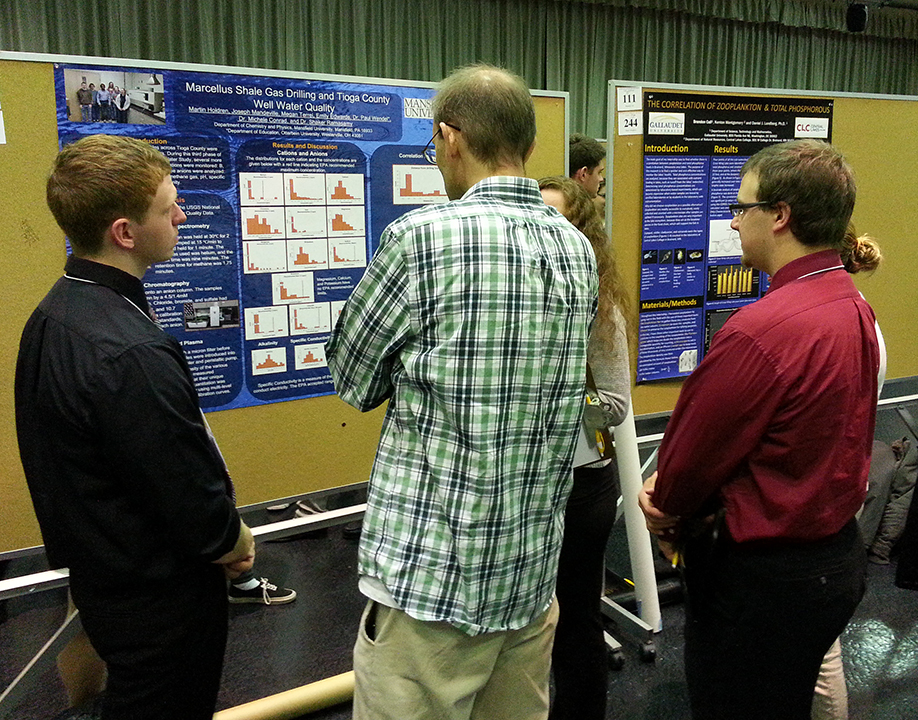 What is a physics research project that would qualify on the university level?