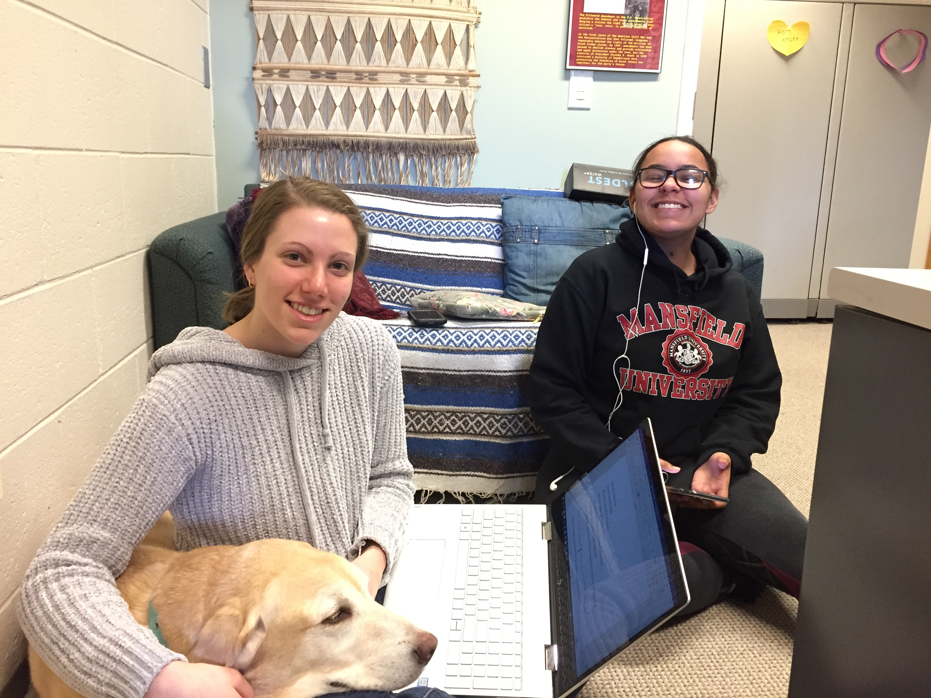 Students studying with dogs