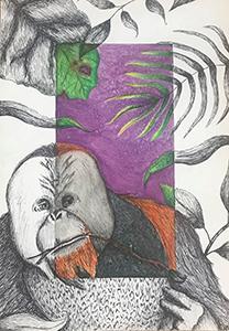 Image of Nick Perneta's Orangutan, Mixed-Media