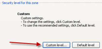 Custom Level